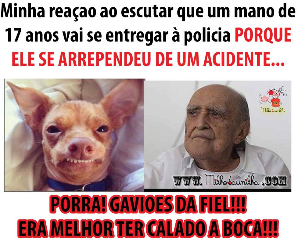 PORRA GAVIOES DA FIEL!!! ERA MELHOR TER CALADO A BOCA!